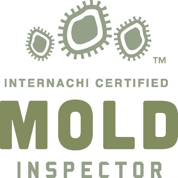 Wilmington mold inspection near me