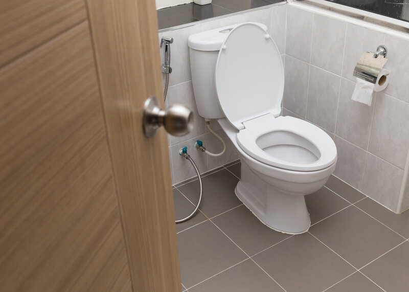Toilet Inspection Wilmington